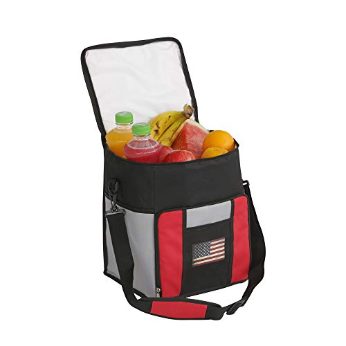 Collapsible Cooler Bag-3