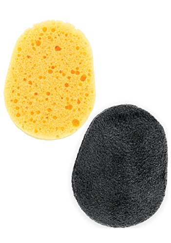 Back Applicator Sponges 1