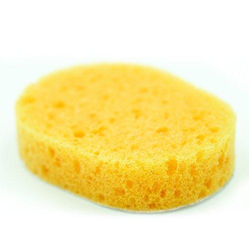 Back Applicator Sponges-4
