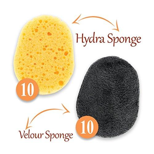 Back Applicator Sponges-3